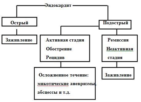 Классификация инфекционного эндокардита